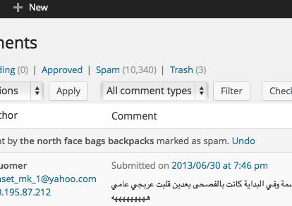 أخر تعليق حقيقي وصل للمدونة... مند سنة وشهر تقريبا !